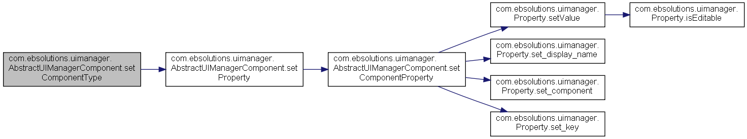 TMCV5-java-11 0 1-TC_RACLESS: com ebsolutions uimanager